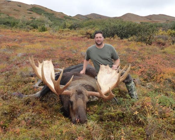 Wade Stewart moose 2015